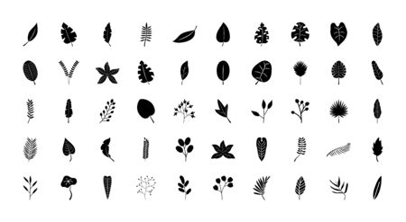 tropical leaves icon set over white background, silhouette style, vector illustration Vettoriali