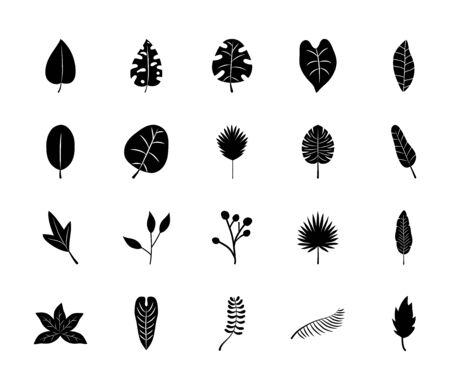 icon set of tropical leaves and fan palm leaf over white background, silhouette style, vector illustration