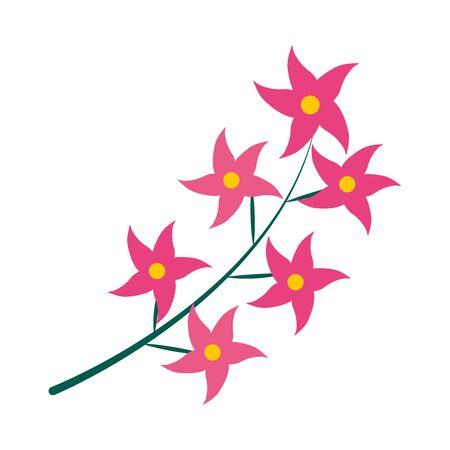Orchids flowers icon over white background, flat style, vector illustration Reklamní fotografie - 150013970