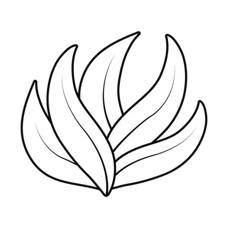 bay leaves icon over white background, line style, vector illustration