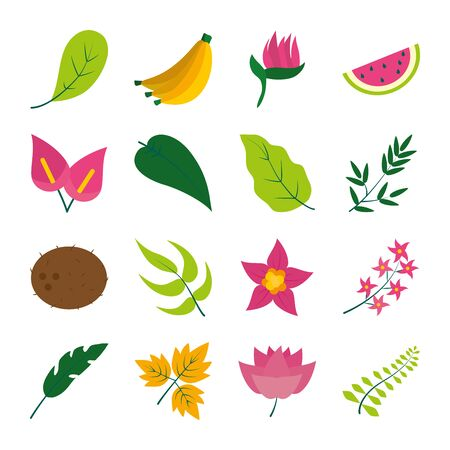 tropical flowers and fruits icon set over white background, flat style, vector illustration