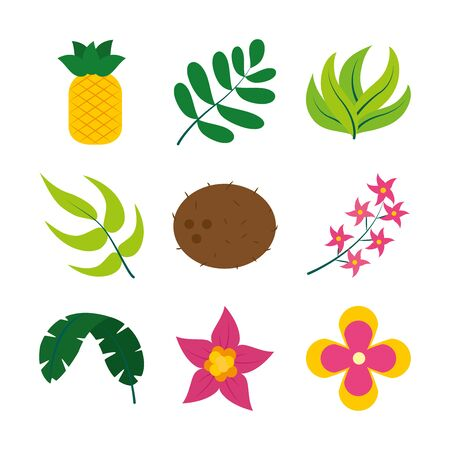leaves and tropical fruits icon set over white background, flat style, vector illustration Ilustrace