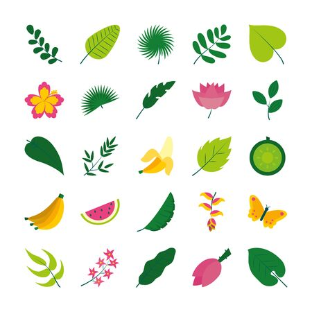 tropical fruits and flowers icon set over white background, flat style, vector illustration