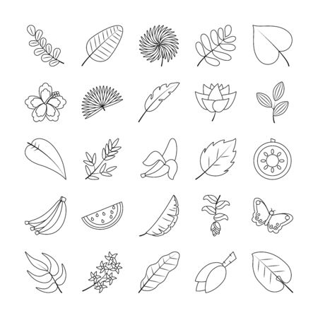 tropical fruits and flowers icon set over white background, line style, vector illustration