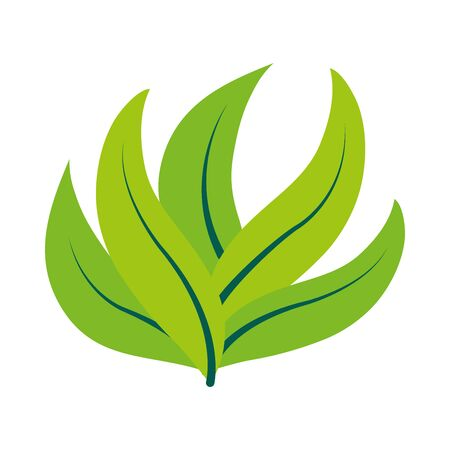 bay leaves icon over white background, flat style, vector illustration