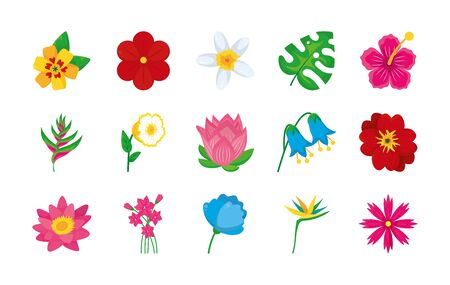 bird of paradise and colorful flowers icon set over white background, colorful design, illustration