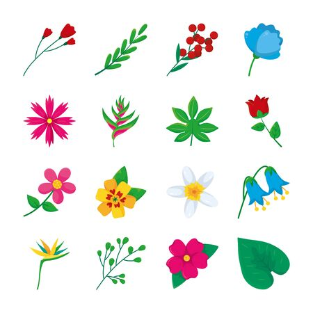 rose and tropical flowers icon set over white background, colorful design, illustration