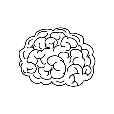 brain icon over white background, line style, vector illustration