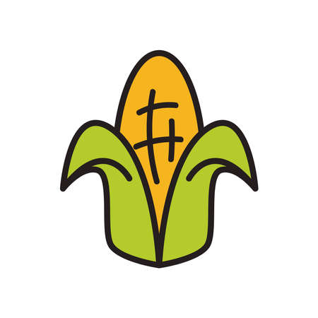 Corn line and fill style icon design, Food vegetable agriculture green plant maize cob and organic theme Vector illustration