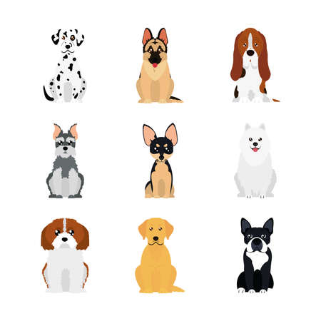 cartoon dalmatian dog and dogs icon set over white background, flat style, vector illustration