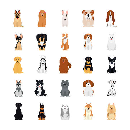 cartoon golden retriver and dogs icon set over white background, flat style, vector illustration