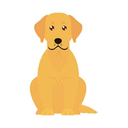 golden retriver dog icon over white background, flat style, vector illustration
