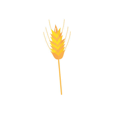 wheat ears icon over white background, flat style, vector illustration 向量圖像