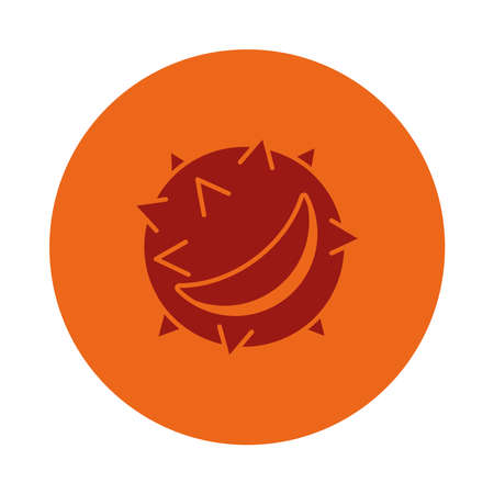 autumn chestnut icon over white background, block style, vector illustration