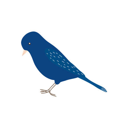 icon of blue bird icon over white background, flat style, vector illustration