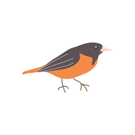 nighttintale bird icon over white background, flat style, vector illustration