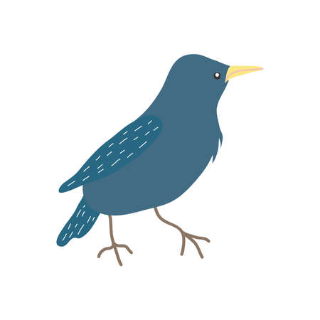 cartoon starling icon over white background, flat style, vector illustration
