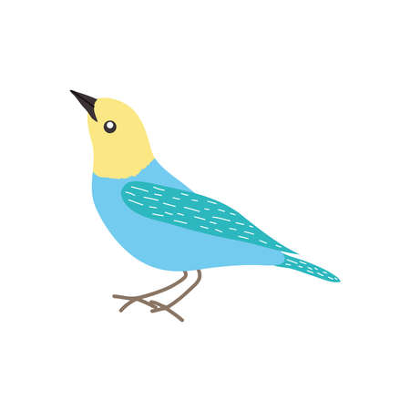 blue and yellow bird icon over white background, flat style, vector illustration