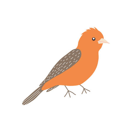 crossbill bird icon over white background, flat style, vector illustration