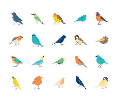 icon set of birds icon over white background, flat style, vector illustration