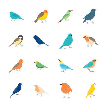 icon set of cartoon birds over white background, flat style, vector illustration  イラスト・ベクター素材