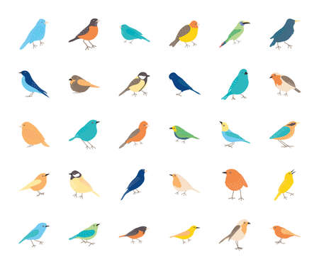 icon set of birds over white background, flat style, vector illustration