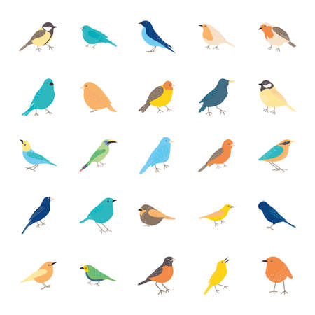 birds icon set over white background, flat style, vector illustration  イラスト・ベクター素材