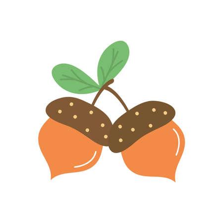 acorns icon over white background, flat style, vector illustration Vector Illustration