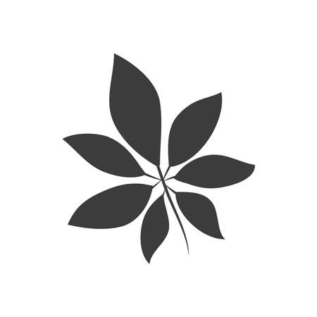 horse chestnut leaf icon over white background, silhouette style, vector illustration