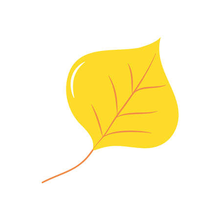 autumn leaves concept, aspen leaf icon over white background, flat style, vector illustration