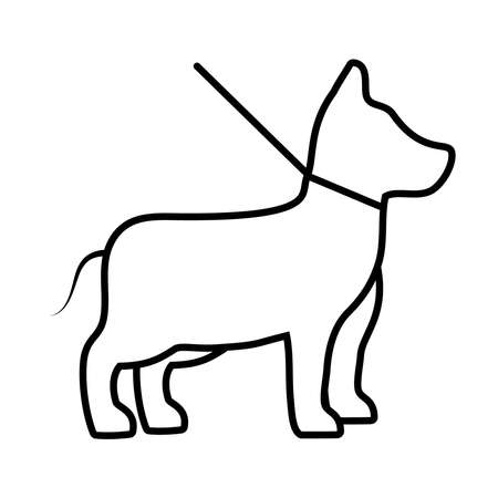 dog on leash icon over white background, line style, vector illustration