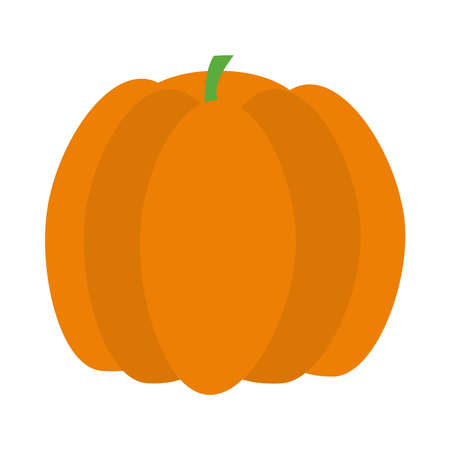 pumpkin fruit icon over white background, flat style, vector illustration Ilustração