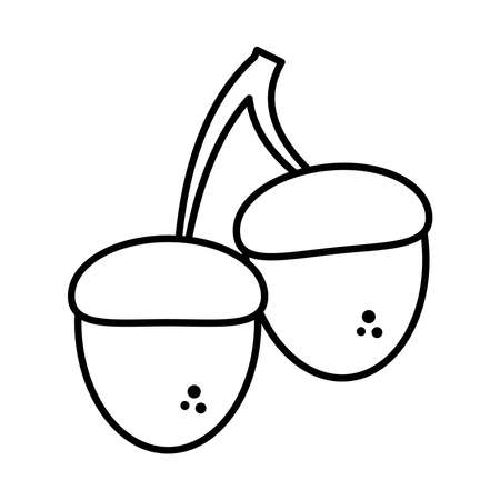 acorns icon over white background, line style, vector illustration Ilustração