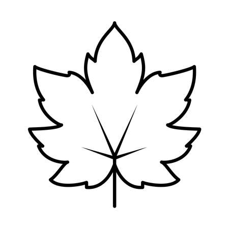 maple leaf icon over white background, line style, vector illustration Ilustração
