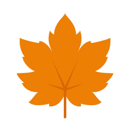 maple leaf icon over white background, flat style, vector illustration Ilustração