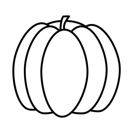 pumpkin fruit icon over white background, line style, vector illustration Ilustração