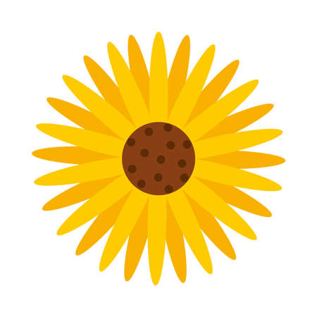 sunflower icon over white background, flat style, vector illustration Ilustração