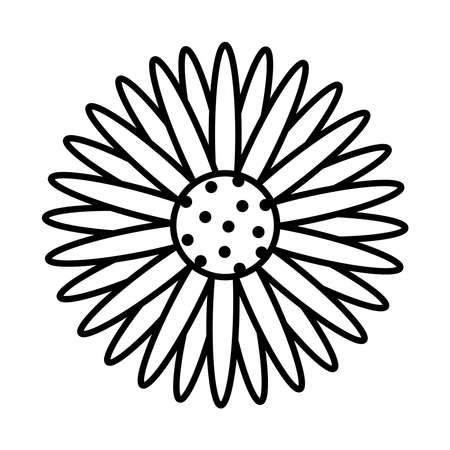 sunflower icon over white background, line style, vector illustration