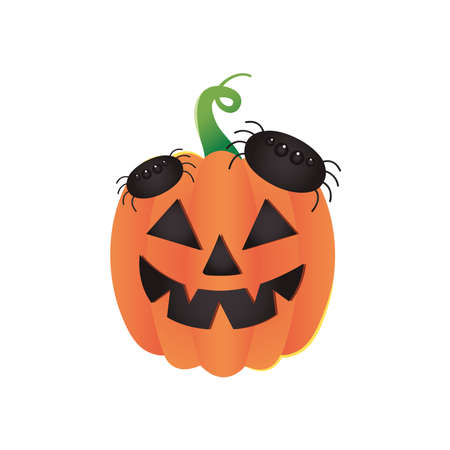 halloween pumpkin with spiders over white background, colorful design, vector illustration