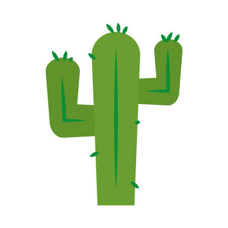 mexican cactus icon over white background, flat style, vector illustration