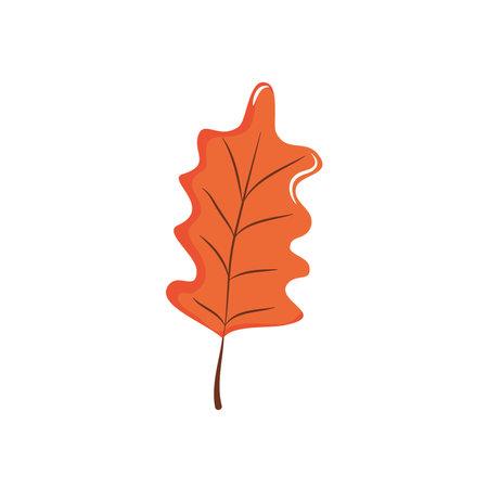 oak leaf icon over white background, flat style, vector illustration