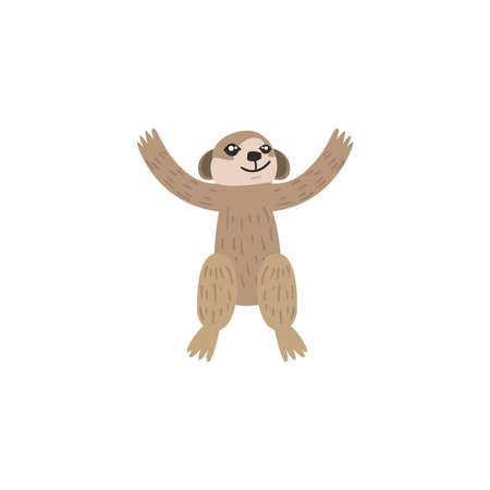 cute sloth animal on white background vector illustration design