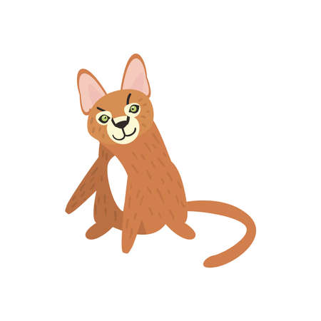 cute hyena animal on white background vector illustration design