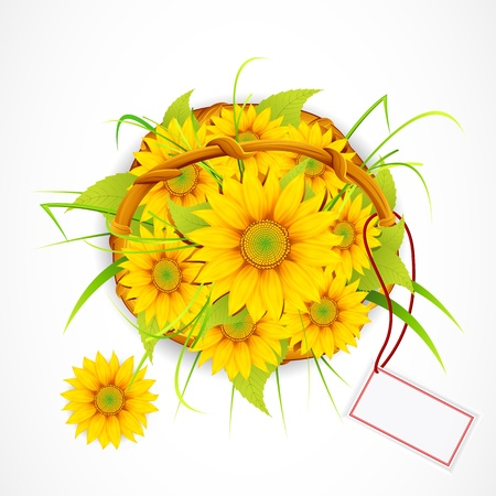 illustration of basket full of sun flower with tag to write sample text Stock Illustration - 9062644