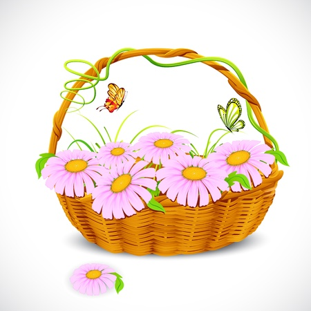 illustration of basket full of daisy flower with tag to write sample text Stock Illustration - 9062665
