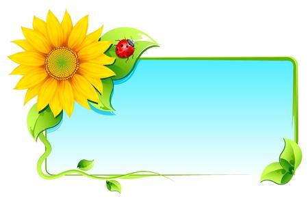 白い背景の上のてんとう虫と空白カード周りに花のイラスト
