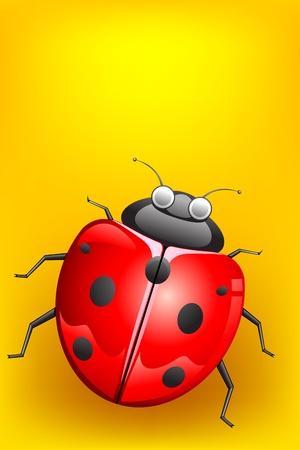 illustration of lady bug on abstract background illustration