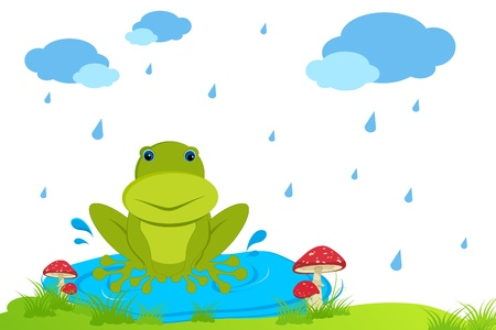 mushroom cloud: illustration of frog sitting in rainy day on natural background