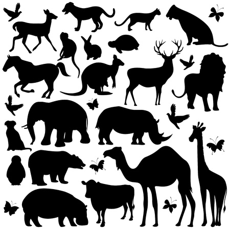 animals in the wild: illustration of collection of animal silhouettes on isolated background Illustration