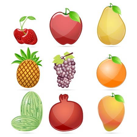 illustration of different fresh glossy fruit on white background Stock Vector - 9605040